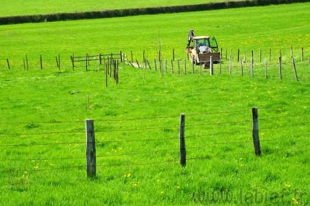 De gauche à droite, la clôture de lisière, l'ancienne clôture à démonter et la nouvelle clôture de séparation de terrain. Voyez la largeur de forêt récupérée par ce déplacement de clôture !